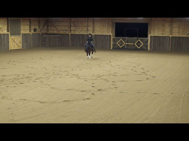Road to the show Lesson 1 part 1 - Shiney Chex 313 aka