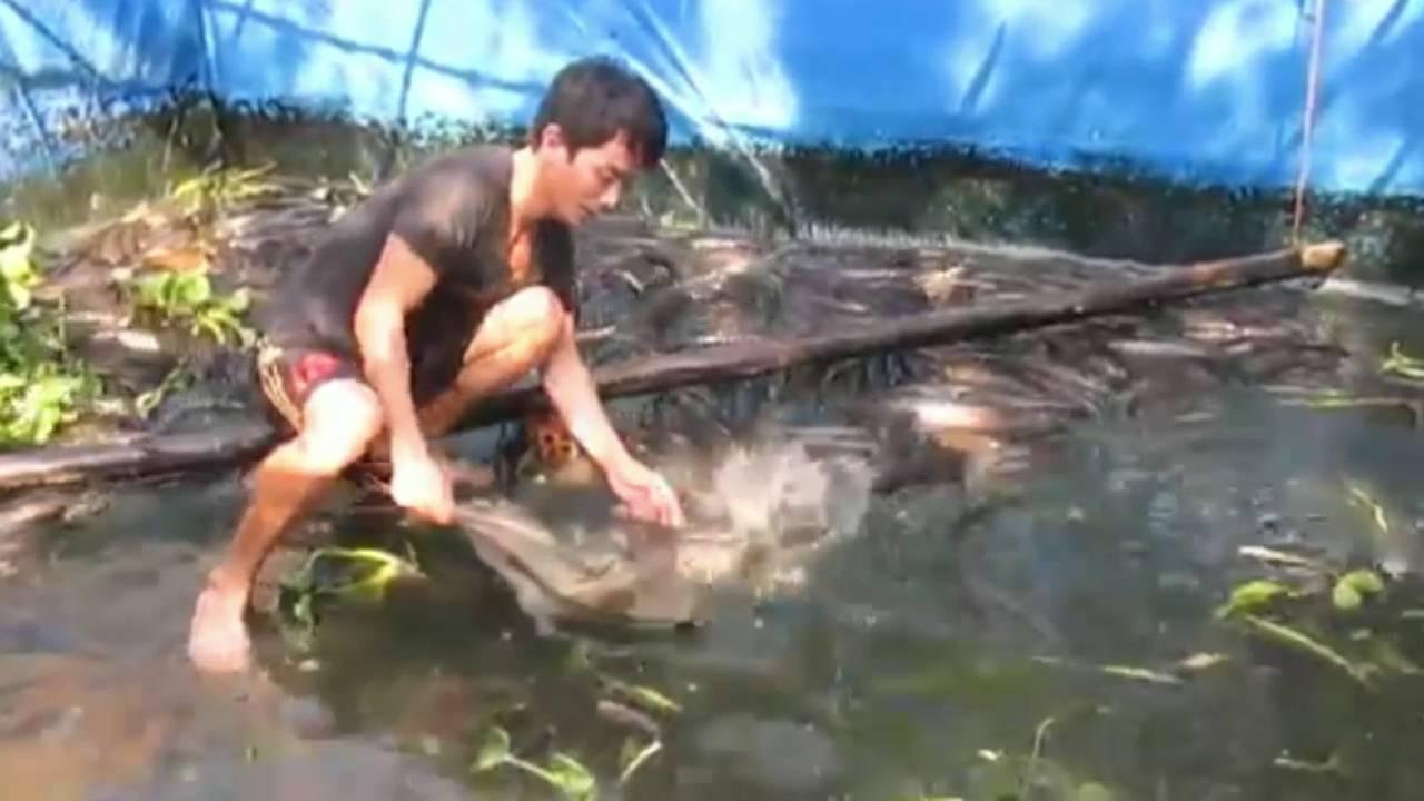 สุดยอดเลยครับ เลี้ยงปลาช่อนในบ่อผ้าใบ สร้างรายได้อย่างงาม