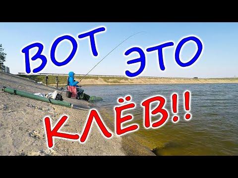 ГУСТЕРА на УДОЧКУ Рыбалка на густеру весной с дамбы. Печенежское водохранилище, Старый Салтов
