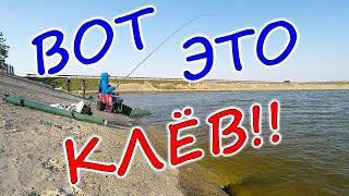 ГУСТЕРА на УДОЧКУ Рыбалка на густеру весной с дамбы Печенежское водохранилище Старый Салтов
