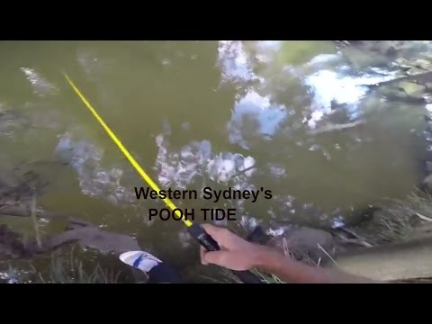 2017 Fishing tips and Techniques (Western Sydneys Pooh Tide Hunting for bass with Tiemco cover bug)