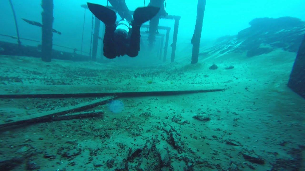 Padi Scuba Diving Certification Westfield Nj Youtube