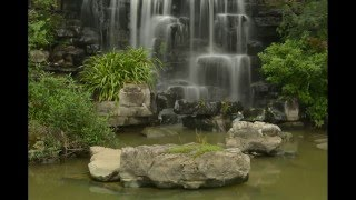 1 Hour Relax Music with Indan Tampura instrument (Only Instrument) | for Meditation , Yoga , , Spa