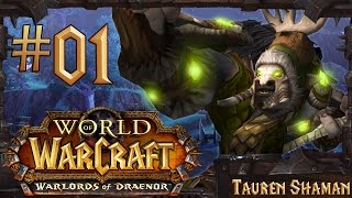 World of Warcraft: Warlords of Draenor Lvl 90-100 Gameplay | Part 1