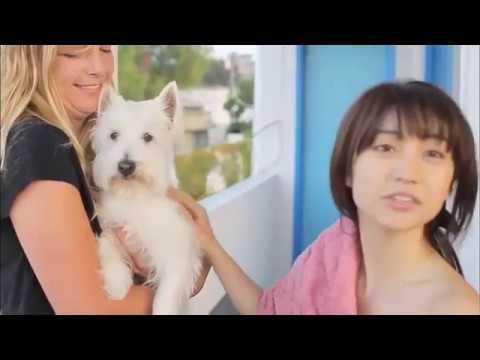 大島優子 – 君は、僕のもの