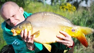 Carp Fishing | Carp and bream caught in Poland (pellet Hunter 12mm)