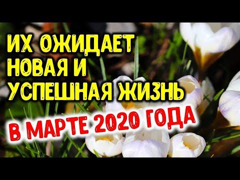 Весной 2020 года эти знаки зодиака ожидает новая и успешная жизнь   Астрора