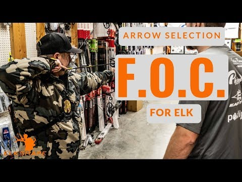 Selecting The RIGHT Arrow For Elk