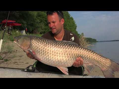 Pescuit la ten pe Dunare cu Cinca Eduard