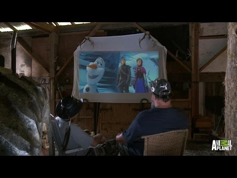 Turtleman Reviews 'Frozen' | Call of the Wildman - Animal Planet  - zb-byUusYlQ -