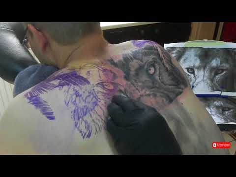 Big Lion Tattoo Timelapse