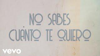 Camilo Sesto - No Sabes Cuanto Te Quiero (Lyric Video)
