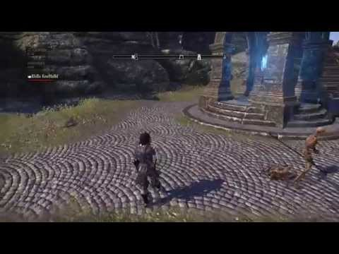 The Elder Scrolls Online - Redguard dance in the street
