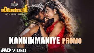 kanninmaniye-song-promo-pailwaan-malayalam-kichcha-sudeepa-krishna-arjun-janya