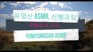 유명산 ASMR+산행과정 자연 꿀잠 스트레스해소 Yum…