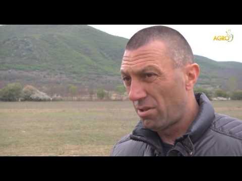 Конете на България - 17.04.17