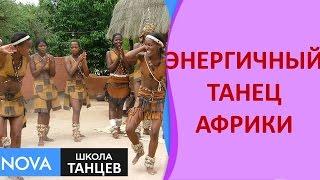 �������� ���� Африканские танцы   Энергичный и яркий танец Африки   Школа танцев NOVA ������