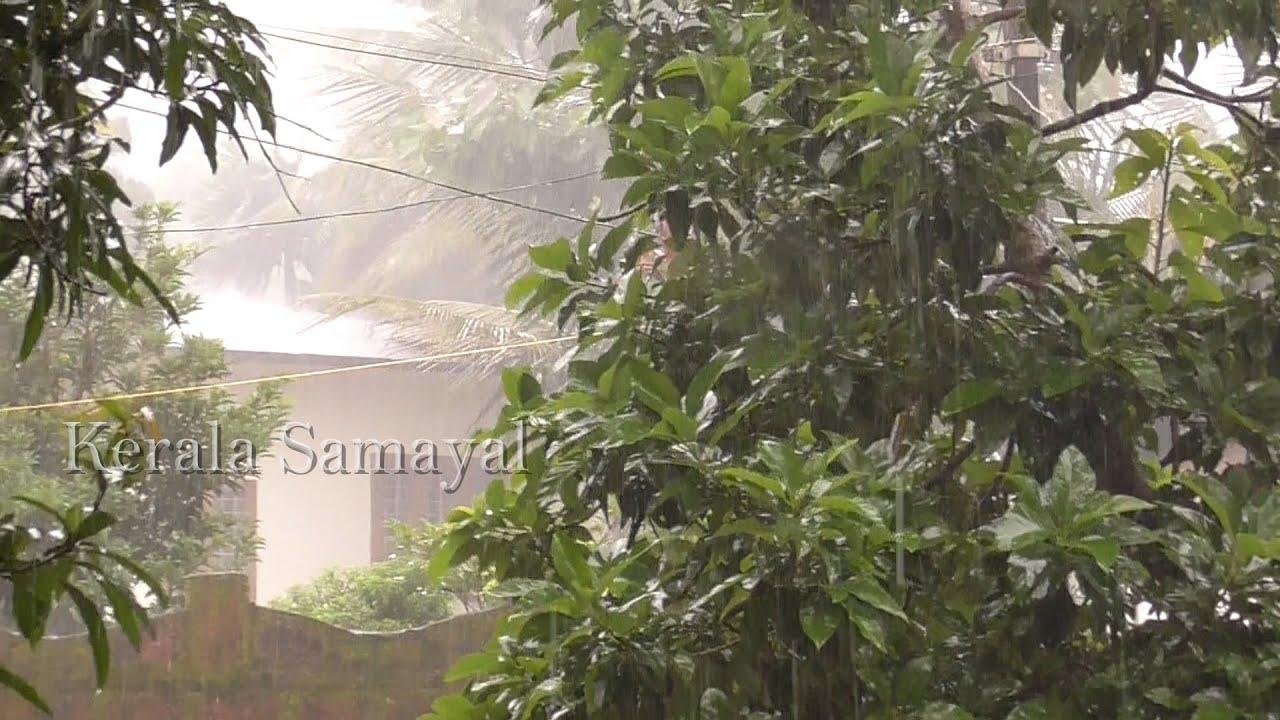Day 10 || A Rainy Day || Evening Snacks || How to roast Peanuts || Tamil