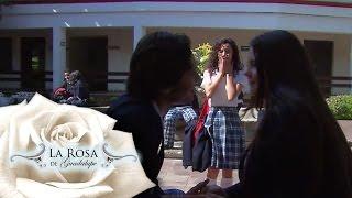 Brenda, celosa de la relación de Lucinda y Bernardo   Polos Opuestos   La Rosa de Guadalupe