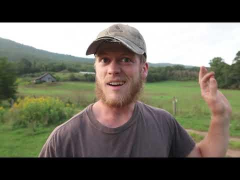 More Logs & More Milling! -  Part 1