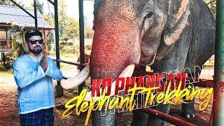 Koh Phangan - Elephant Trekking - Сломанный паром - ТАЙЛАНД / Базинян ШОУ