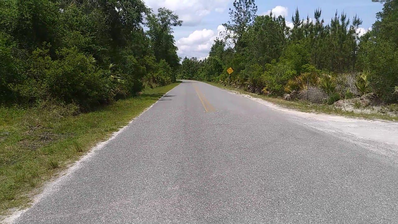 LAND FOR SALE: 50 +/- Acres-Marion County, Florida, Zoned AG1 Wholesale  ONLY $189,900 & Worth $250k+