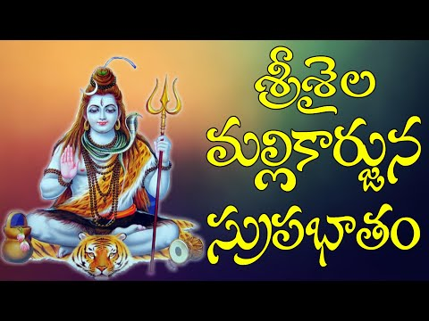 shiva-suprabhatam-lord-shiva-devotional-songs---lord-shiva-collections-|-jayasindoor-siva-bhakti