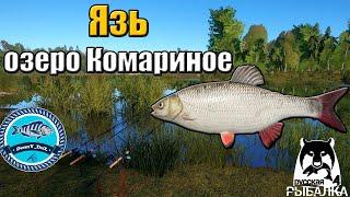 Язь на озере Комариное Русская Рыбалка 4
