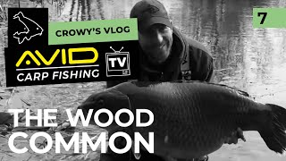 The Wood Common 2019
