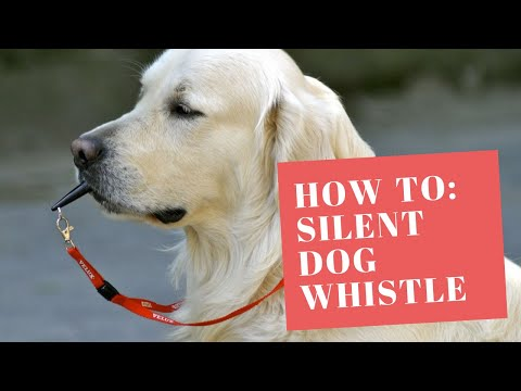 silent-dog-whistle-tutorial!!!