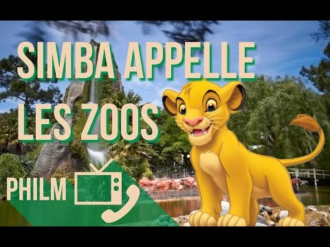 Le Roi Lion VS les zoos - Philm #19
