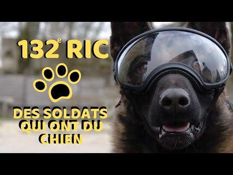 Chiens soldats au 132e RIC