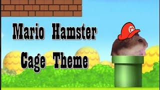 Mario Hamster Cage Theme