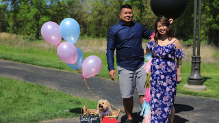 Baby Pao Gender Reveal