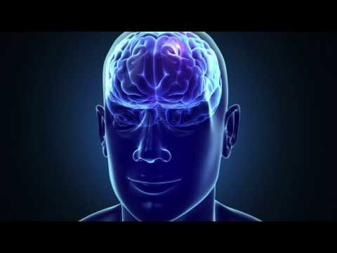 Hack Your Brain - Palo Alto Smart Therapy
