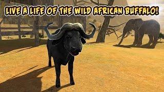 Buffalo Sim: Bull Wild Life