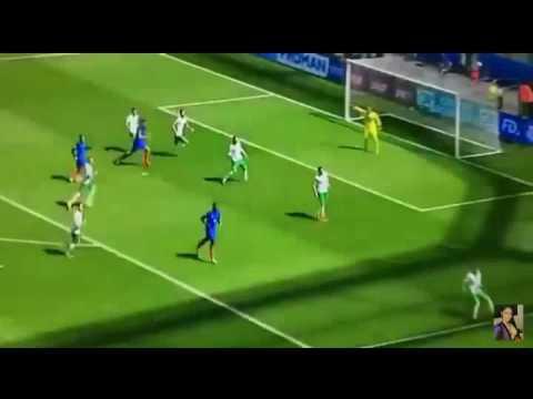 Frankreich Irland Schiedsrichter