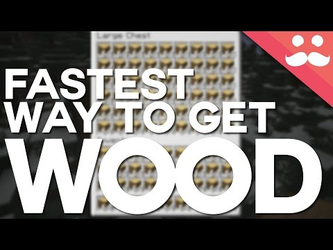 What's The Fastest Way To Get Wood In Minecraft?