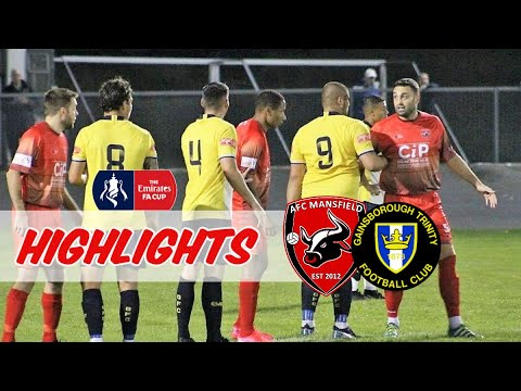 Mansfield Gainsborough Goals And Highlights