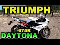 Triumph Daytona 675r  Blitz Rider