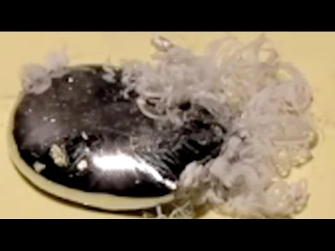 Mercury vs Aluminium -   A weird looking reaction