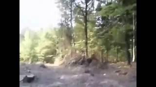 Незаконна вирубка молодого дубового лісу у с. Старуня на Богорочанщині(, 2016-09-20T09:07:04.000Z)
