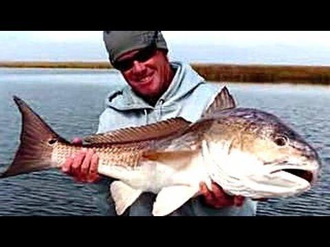 10 Massive Bull Redfish Pictures