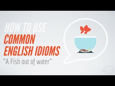 How to Use Common English Idioms  A fish out of water