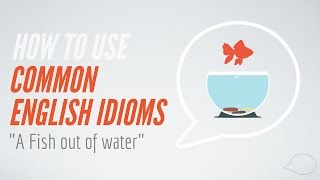 How to Use Common English Idioms | A fish out of water
