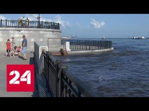 Участки затоплены, дороги размыты: в Амурской области пытаются справиться с непогодой - Россия 24