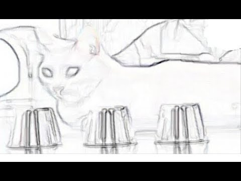 Smart Cat. (As smart as a human.)