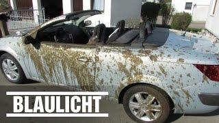 Bauer flutet Cabrio mit Gülle / Tipp der Polizei: Wegschmeißen!