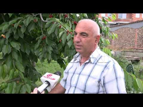 Обилните врнежи предизвикаа значителна штета во Скопје