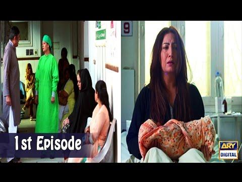 Mubarak Ho Beti Hui Hai  - 1st Episode - 19th April 2017 - ARY Digital Drama